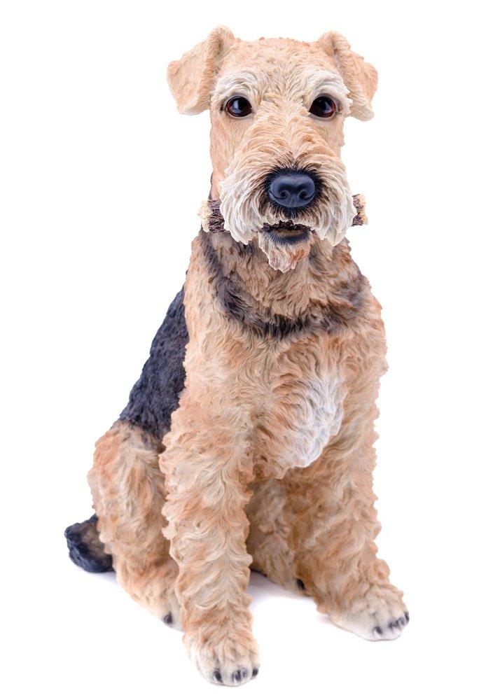 Hi-Line Gift Ltd Airedale Dog Statue by Hi-Line Gift Ltd. (Image #1)