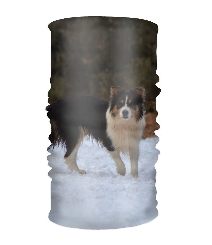 Tianyiファンタジー雪ウルフヘッドバンドストレッチワイド汗止めバンドスポーツスカーフヘッドラップMoisture Wicking  dog in winter19 B07G1TP4GS