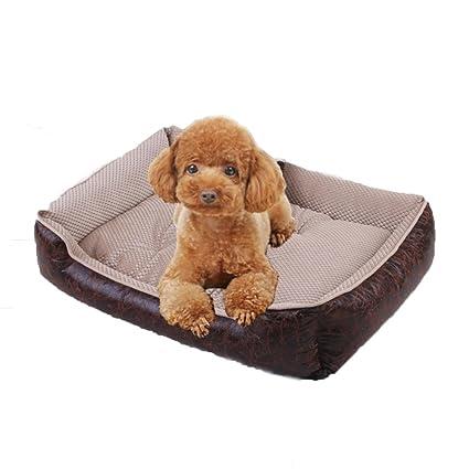 Gleecare Cama para Mascotas Grandes Medianas y Gato de Perro de tamaño pequeño nidifican Perro Alfombra