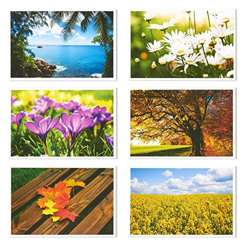 Set of 40 Four Seasons Postcards Print Variety Pack Fall Autumn Winter Summer Spring Theme Self Mailer Mailing Side Postcards 20 Different Picture Designs 40 Pack Postage Saver - 4 x 6 Inches Photo #5