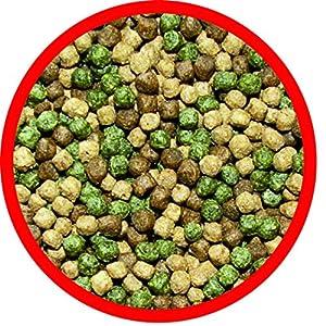 AL-KO-TE, Comida para Las 3 Estaciones para Kois, Primavera hasta otoño, pellets flotantes, Comida Principal Profi Mix