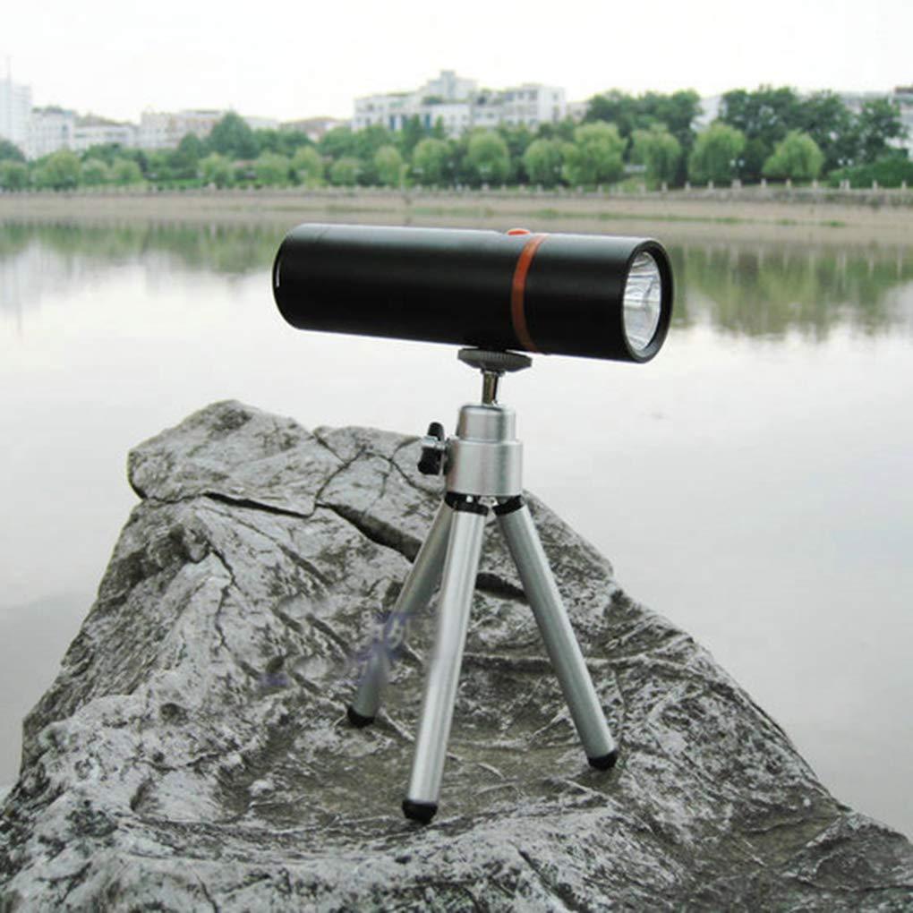 babysbreath17 Aleaci/ón de Aluminio Caja de Pesca de la Noche Linterna Handheld con Pilas de la l/ámpara port/átil tr/ípode