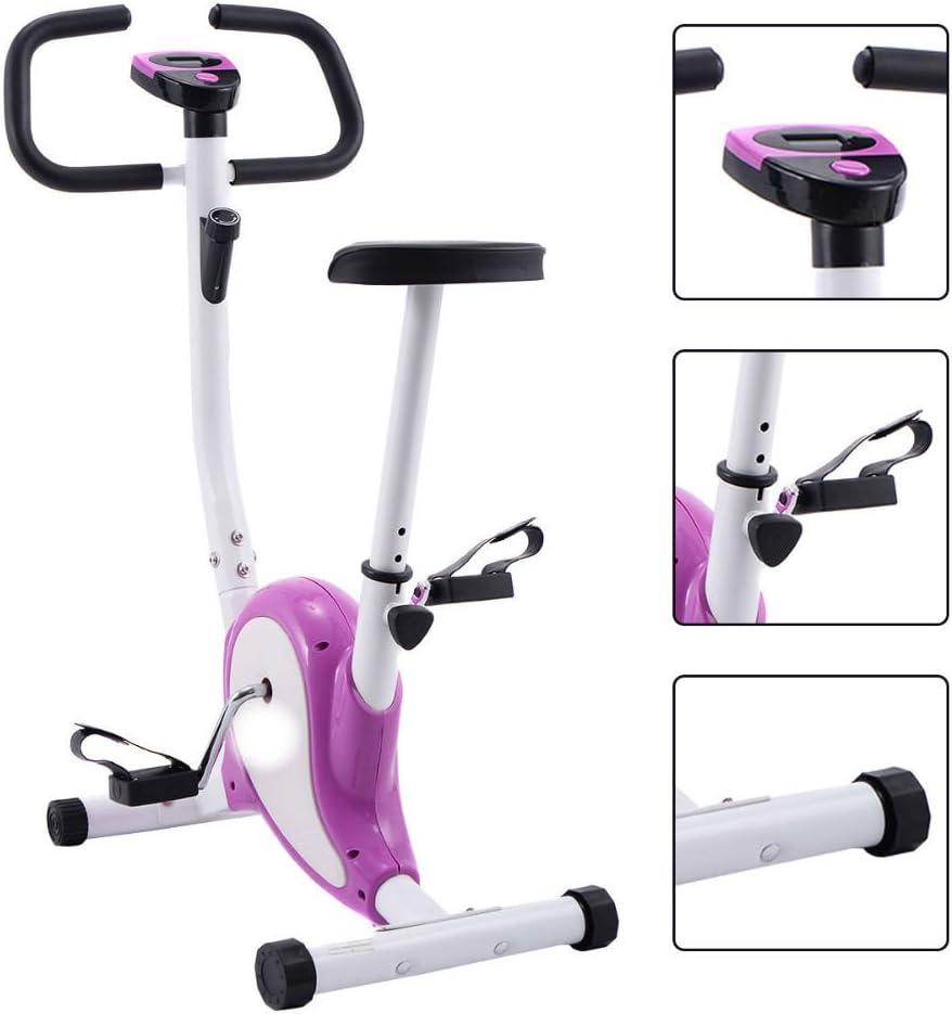 Bicicleta estática de Ejercicio Ciclismo Fitness Cardio Aerobic ...