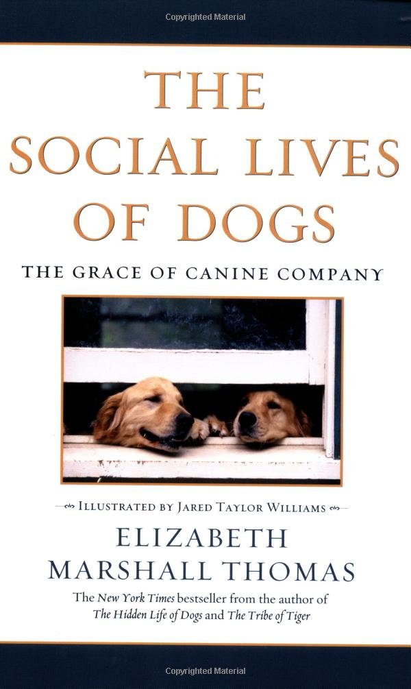 Download The Social Lives of Dogs: The Grace of Canine Company pdf epub
