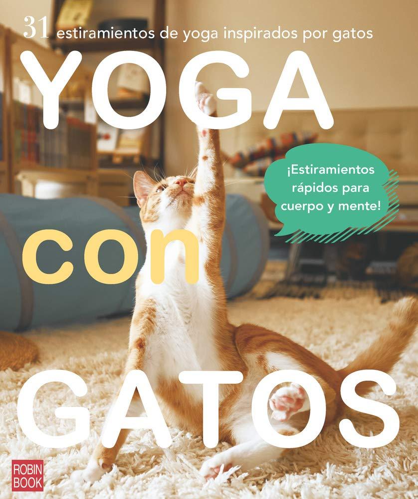 Yoga con gatos: 31 estiramientos de yoga inspirados por ...