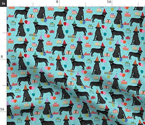 Spoonflower Black Lab Fabric - Birthday Party Labrador Retriever Blue Dog Dogs Pet Portrait Gift Print on Fabric by The Yard - Chiffon for Sewing Fashion Apparel Dresses Home Decor