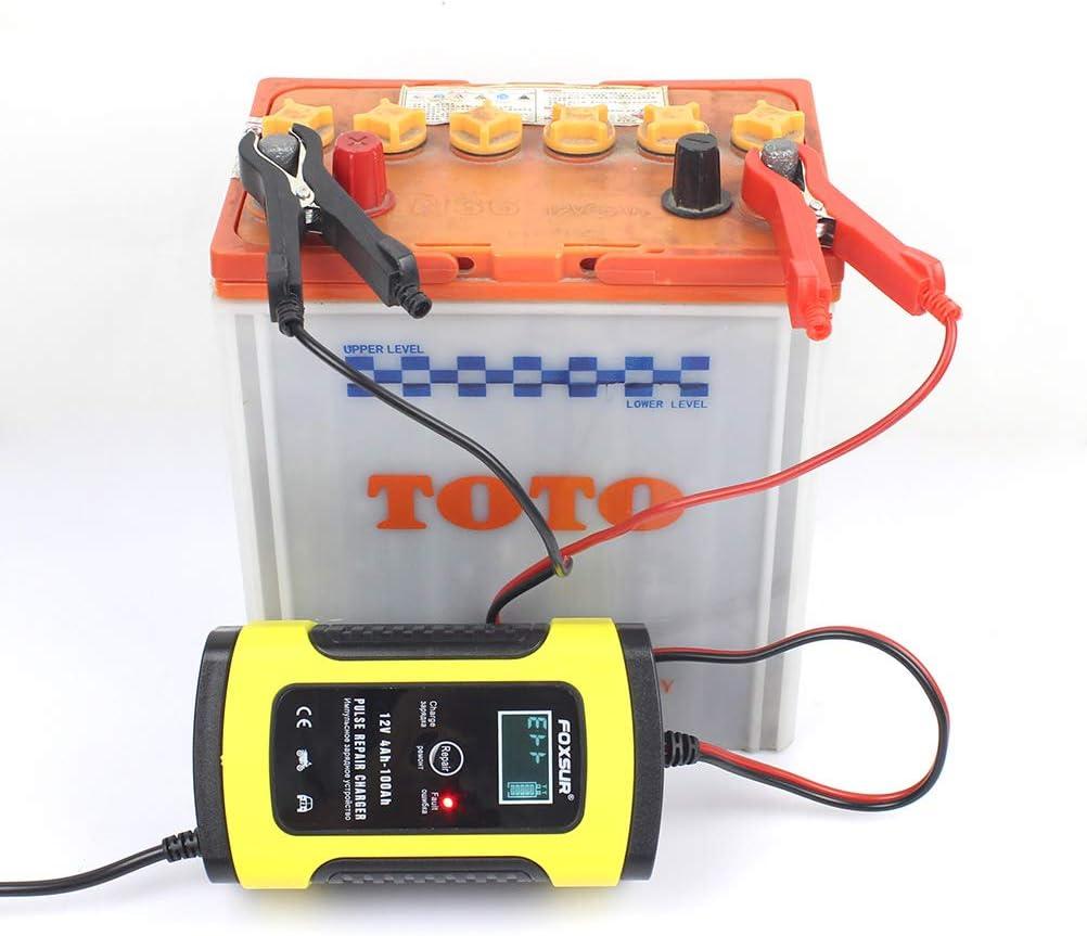 LIOOBO Caricatore e mantenitore per Auto per Moto Identificazione Automatica di batterie per Auto e Moto 12V 4A con Spina Europea