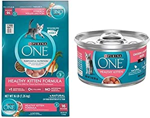 Purina ONE Natural Dry Kitten Food, Healthy Kitten - 16 lb with ONE Grain Free, Natural Pate Wet Kitten Food, Healthy Kitten Chicken & Salmon Recipe - (24) 3 oz. Pull-Top Cans