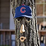 MLB Chicago Cubs Forest Face