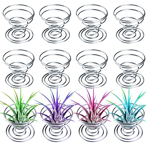 Aneco 12 Pieces Air Plant Holder Air plant Tillandsia Tabletop Container Stainless Steel Wire Stand Plant Display Racks, - Piece Display 12