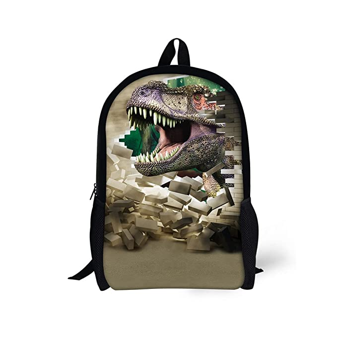 7c28fcb6f3 doginthehole Cool Crazy Dinosaur Print Book Bags for Grade 1-3 Kindergarden  Boys