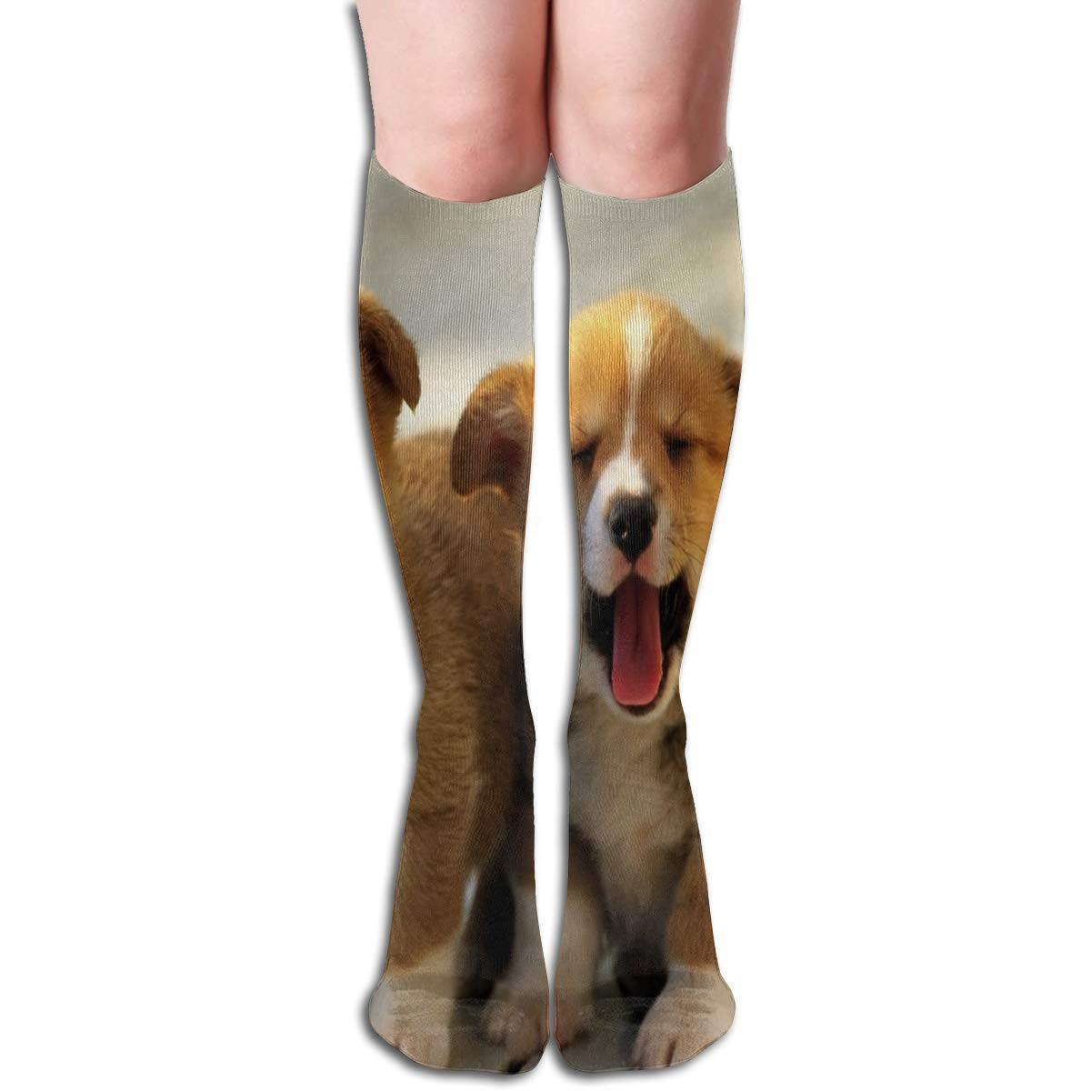 Girls Socks Mid-Calf Puppies Dogs Animal Winter Hot For Halloween