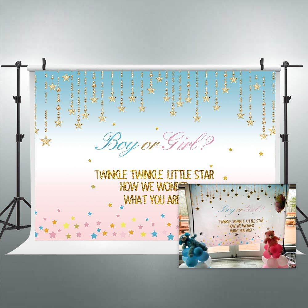 Riyidecor Boy or Girl Twins Baby Shower Backdrop Turquoise Twinkle Gender Reveal Star Kids Pink Photography Background 7x5ft Birthday Geometrical Decoration Newborn Props Party bluesh Vinyl Cloth