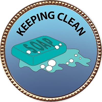 Keepsake Awards Keeping Clean Award, 1 inch Dia Gold Pin Personal Skills Collection: Toys & Games