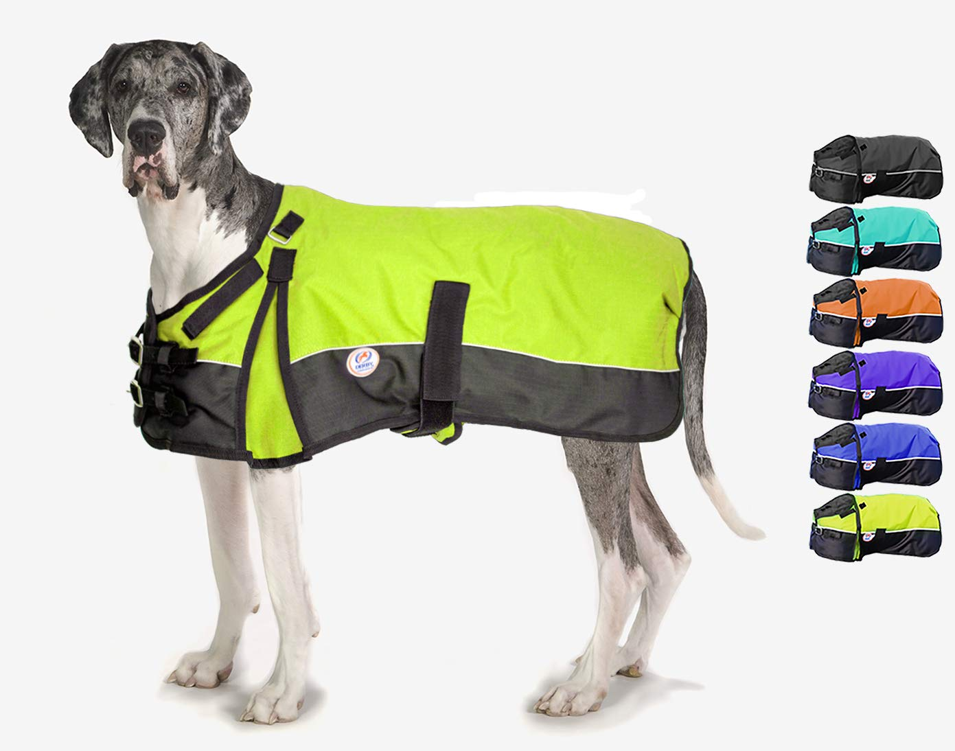 Derby Originals Medium Weight Waterproof Dog Coat with 1 Year Warranty 150G Polyfil & Horse-Tough 600D Ripstop Exterior - Two Tone Design in Multiple Colors & Sizes by Derby Originals