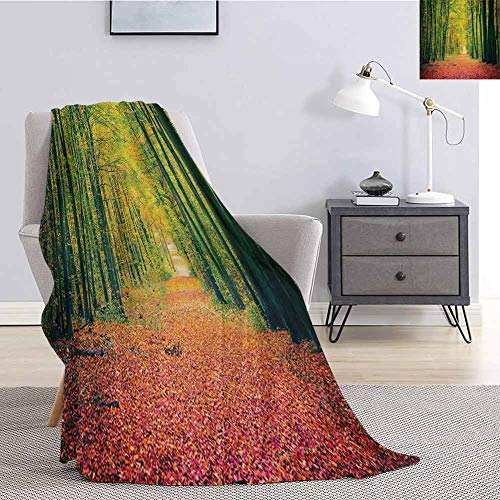 Luoiaax Forest Fuzzy Blankets King Size Pathway in Autumn Dramatic Road to Infinity Toned Warm Fall Colors Rural Scenery Print Super Soft Cozy Queen Blanket W59 x L70.5 Inch Green