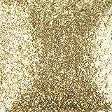 duncan sealer - Duncan Sparklers Brush-On Glitter Sealer, 2 Ounce Bottle, SG882, Glittering Gold