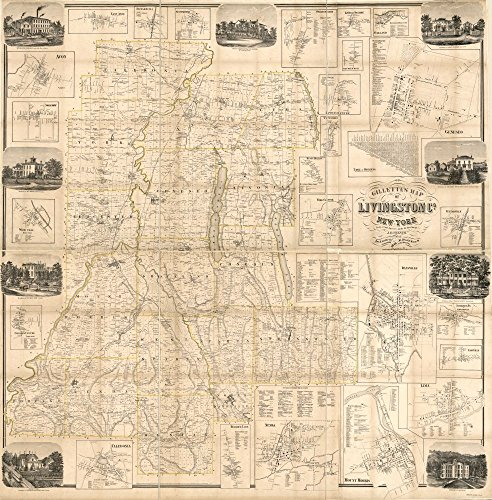 1858 map Gillette's map of Livingston Co., New York : from actual surveys|Size 24x24 - Ready to Frame| Cadastral Cities and Towns|Dansville|Dansville NY|Geneseo|Geneseo NY|Landowners|Livingston - Livingston Shopping In