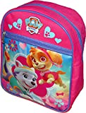 Paw Patrol Girls Skye and Everest Pink Mini 10