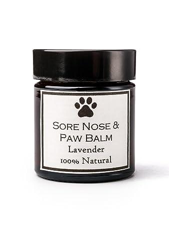 Clovelly Soap Balsam Hunde Aller Rassen Lavendel Beruhigt Pfoten