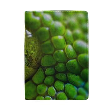 8f5f620992c3 Amazon.com | Green Boa Constrictor Blocking Print Passport Holder ...
