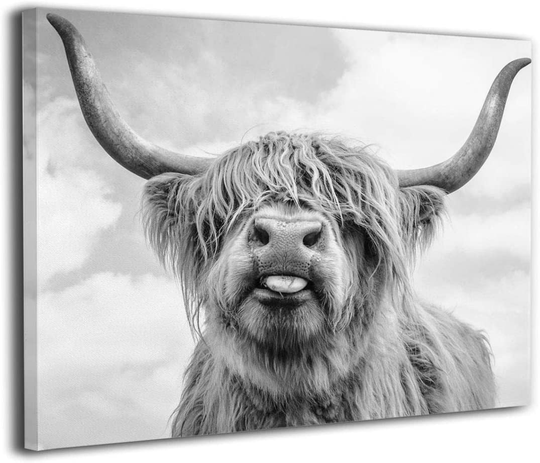 Canvas Print Wall Art Black and White Freedom Highland Cow Pictures Painting for Living Room Bedroom Modern Home Decor Ready to Hang Stretched and Framed Artwork 16''Hx20''W