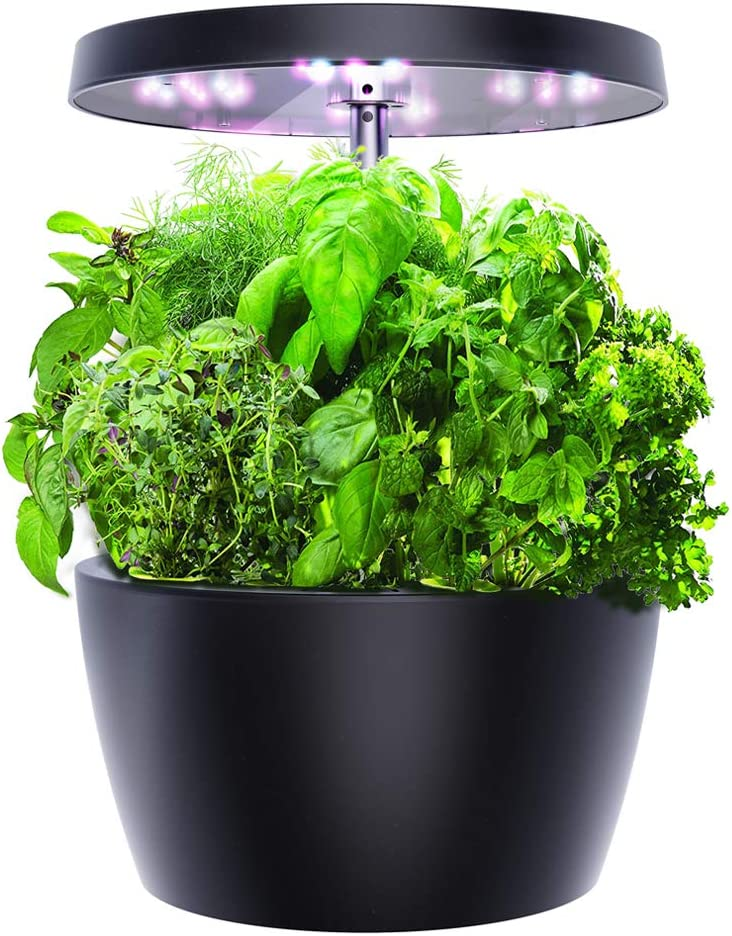 Smart Garden, Hydroponics Growing System with LED Grow Light, Indoor Herb Garden Starter Kit for Beginners, Black, 4 Pots