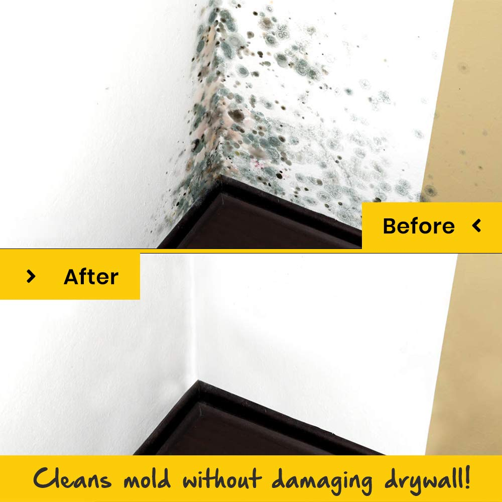 EcoClean Solutions Mold, Mildew & Algae Remover | No-Scrub Stain Remover |Instant Results for All Surfaces (4 Gallons) by EcoClean Solutions (Image #8)