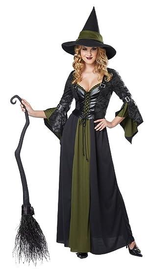 Amazon California Costumes Womens Classic Witch Long Dress