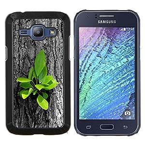 "Be-Star Único Patrón Plástico Duro Fundas Cover Cubre Hard Case Cover Para Samsung Galaxy J1 / J100 ( Hermosas Naturaleza Hojas frescas del árbol Crecer"" )"