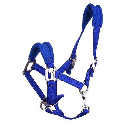 MING nailon y cinta cinturón arnés de caballo de conducción para ...