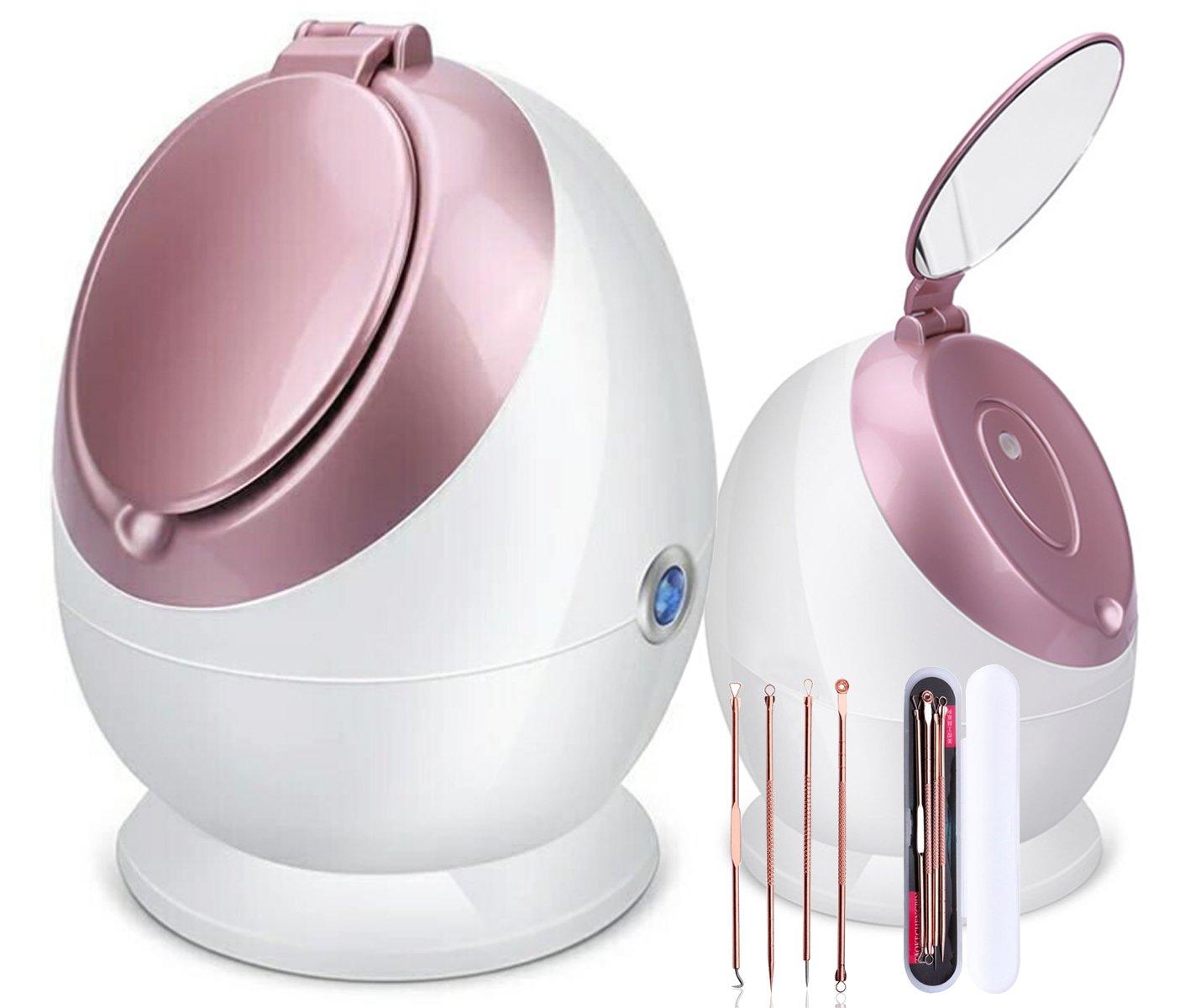 HSD Facial Steamer Nano Ionic 100ML Face Sauna Spray Hot Mist Humidifier Hua si da