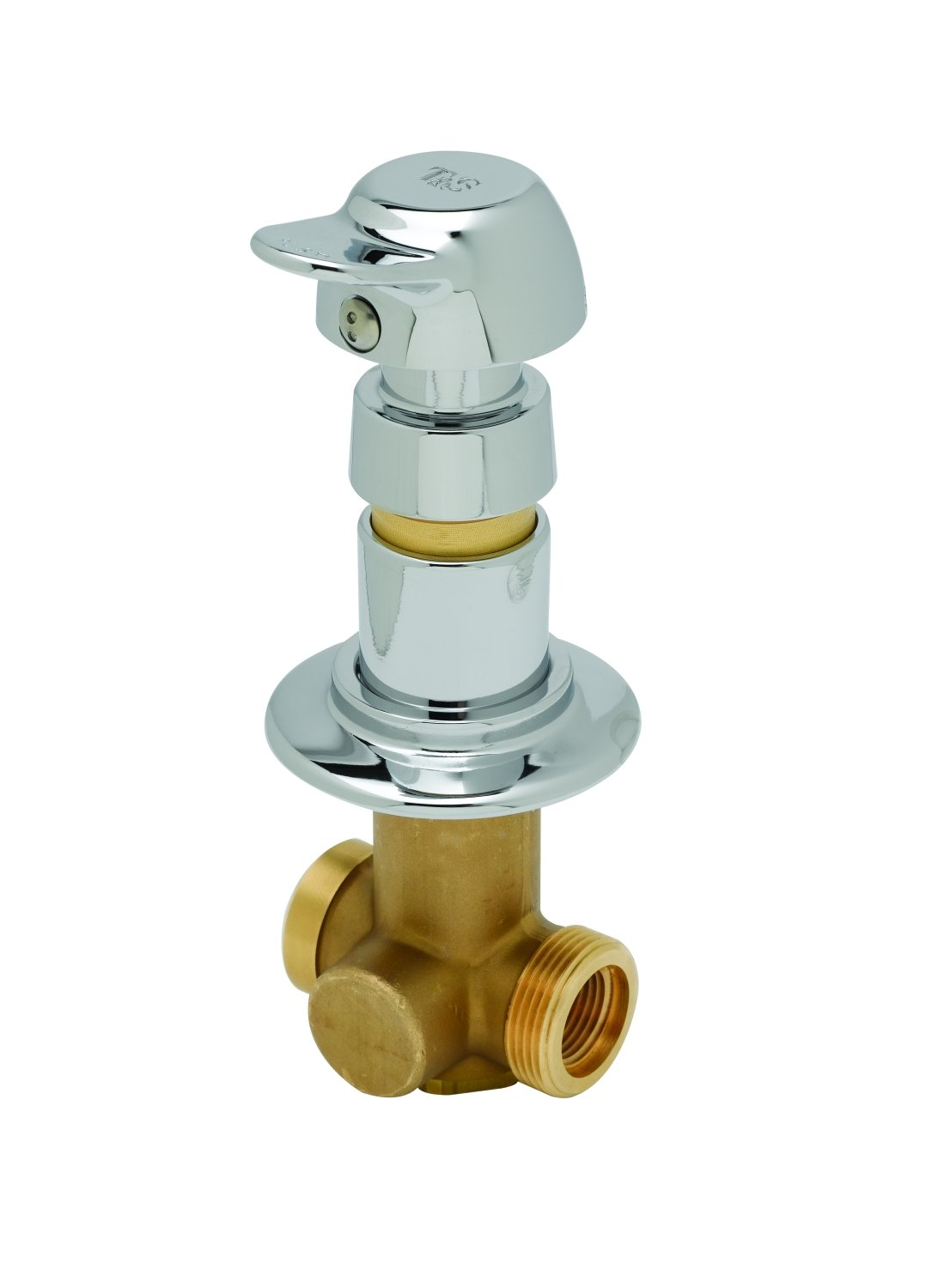 T&S Brass B-1029-PA Concealed Straight Valve, Slow Self-Closing, Pivot Action Metering by T&S Brass B004HGUIBO