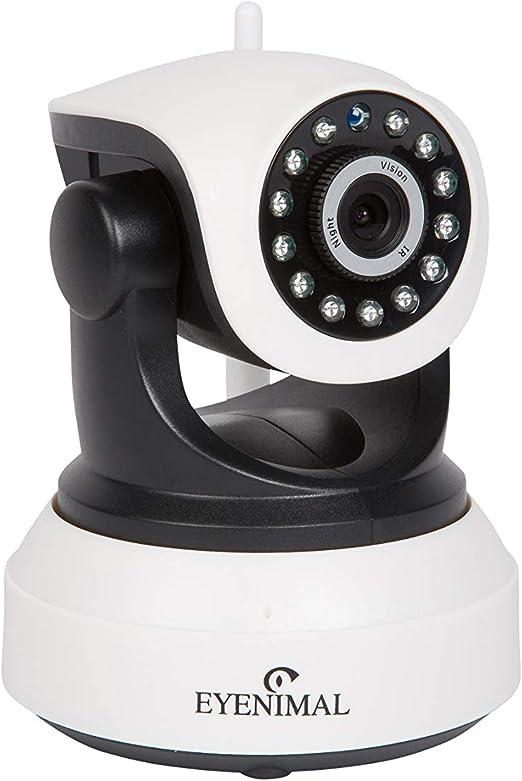 Opinión sobre NUM'AXES Eyenimal Pet Vision Live HD Cámara de Vigilancia de Perros