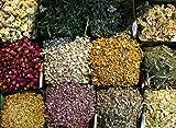 herb starter organic - Herbal Sampler: 30-herb Starter Sampler (Organic/wild Harvested Herbs)
