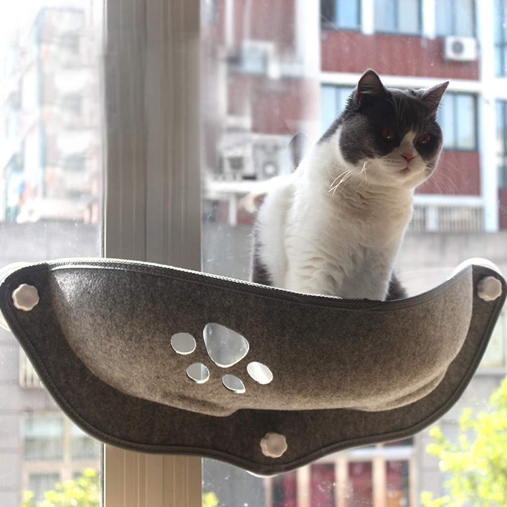 Amazon.com : Ralos Cat Window Perch Window Seat Cat Bed ...