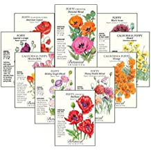 """Botanical Interests """"Poppy Profusion"""" Flower Seed Collection - 10 Packets with Gift Box"""
