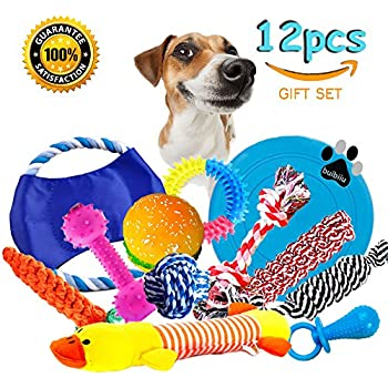 Pet Supplies : Lobeve Dog Toys 10 Pack Gift Set, Variety