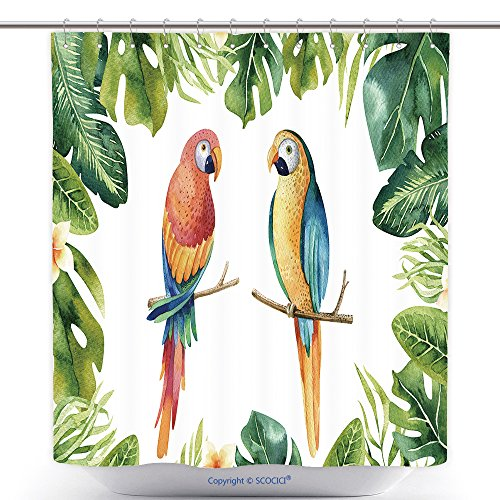 And Customs Costumes Brazil Traditional (Fun Shower Curtains Hand Drawn Watercolor Tropical Plants Set And Parrot Exotic Palm Leaves Jungle Tree Brazil 623391962 Polyester Bathroom Shower Curtain Set With)