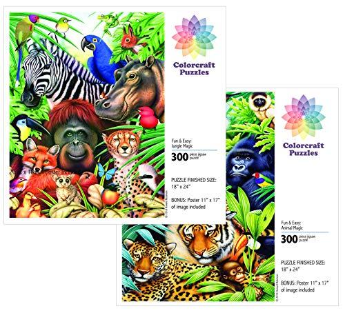 (Colorcraft Jigsaw Puzzle Value Set - 2 X 300 Large Pieces)