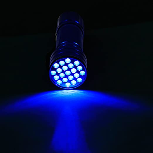2 opinioni per Mixed-gadgets Blue UV Ultra Violet Blacklight 21 LED Camping Outdoor Light Torch