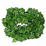 Aplstar 78-Ft 12 strands Artificial Flowers Hanging Vine Plant Leaves ...