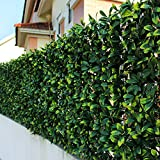 ULAND Artificial Laurel Leaf Fence, Boxwood Hedges Panels, UV Privacy Fence...