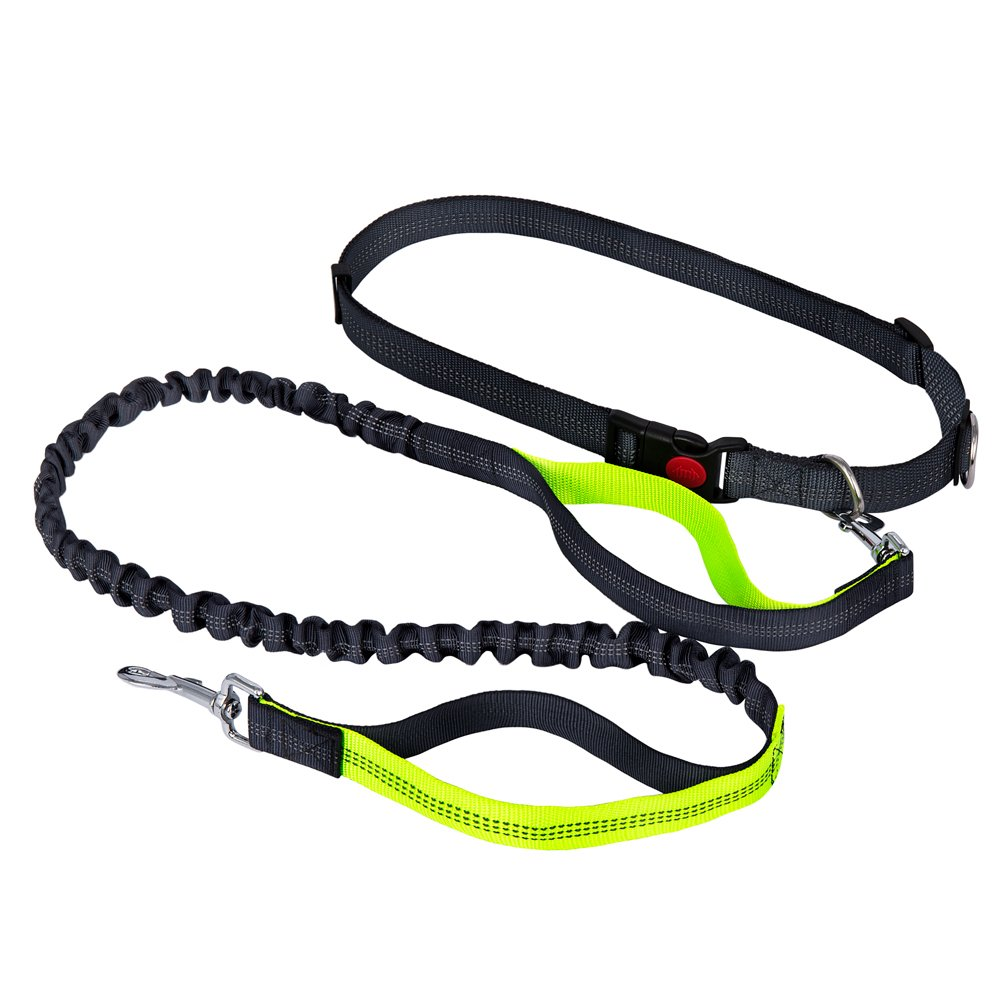 Pasiny Retractable Hands Free Dog Leash with Dual Handle Bungee for Running,Walking,Hiking,Biking and Training