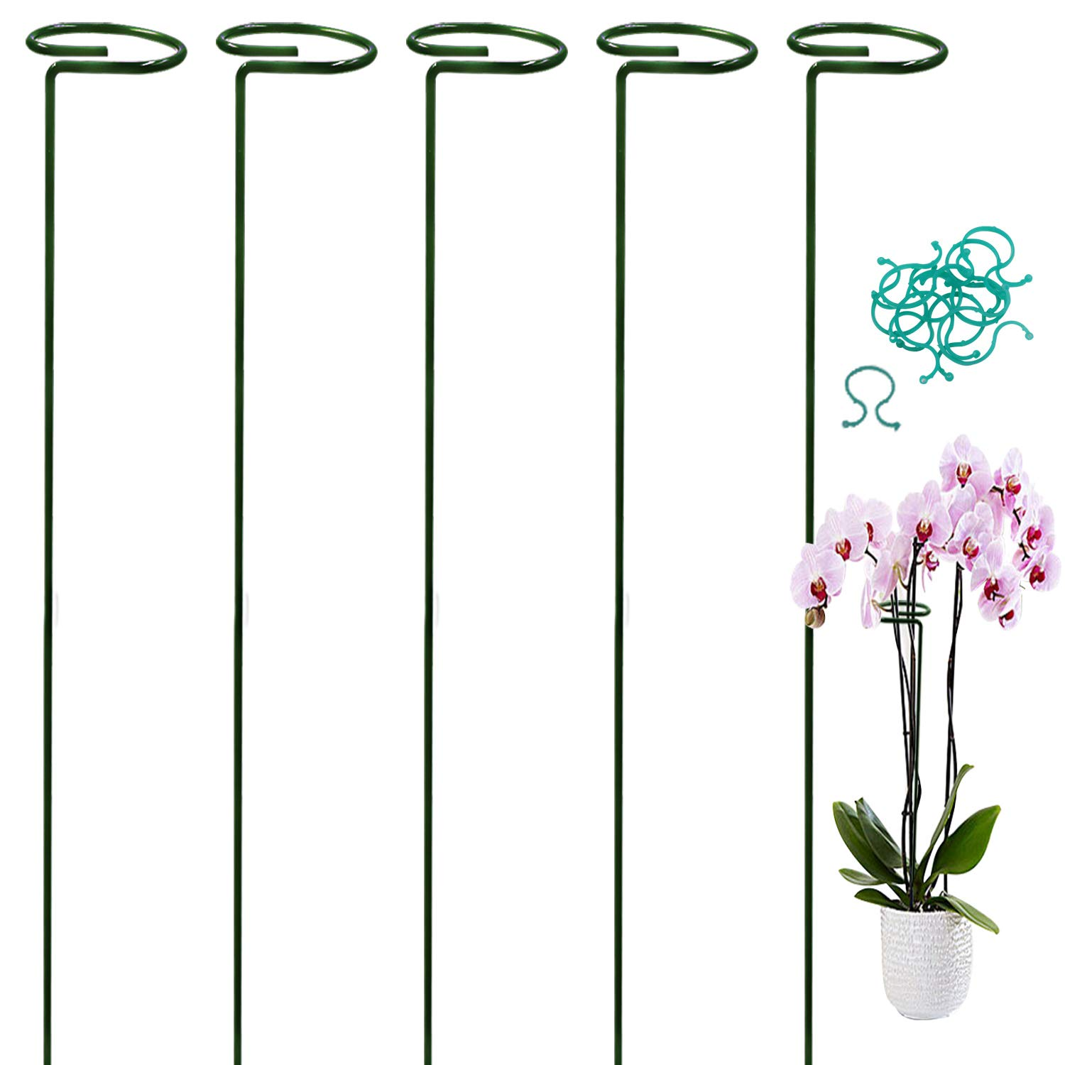 """HiGift 5 Pack Single Garden Plant Stem Support Stakes with 2.5"""" Hoop, with 10 pcs Flower Clips Plant Locks for Securing Plants, 18"""""""