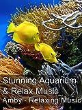 Stunning Aquarium & Relax Music - Amby - Relaxing Music