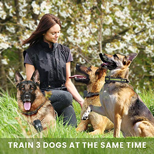 FunniPets Dog Training Collar for 3 Dogs, 2600ft Range Dog Shock Collar with Remote Waterproof Electronic Dog Collar for Medium and Large Breed Dogs with 4 Training Modes Light Shock Vibration Beep