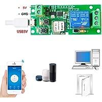 , módulo DIY para hogar inteligente y mando a distancia, 5V, aplicación Ewelink compatible con página de inicio Alexa Echo Google, 5.00V