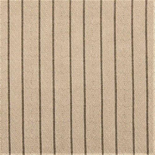 Fabric Robert Allen Beacon Hill Dauphin Stripe Sisal Linen Upholstery ZJ42