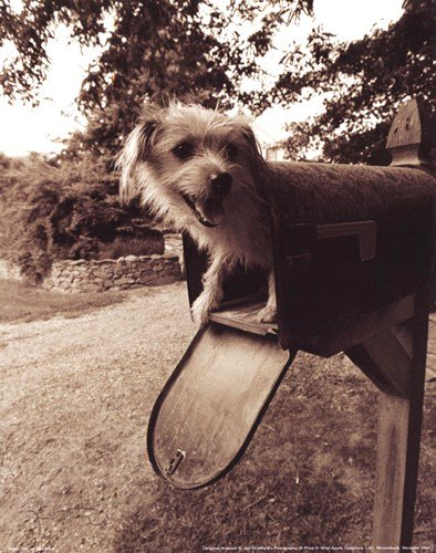 youve got mail from china